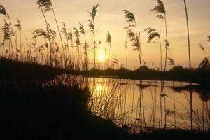Sunset at Strumpshaw Fen Nature Reserve